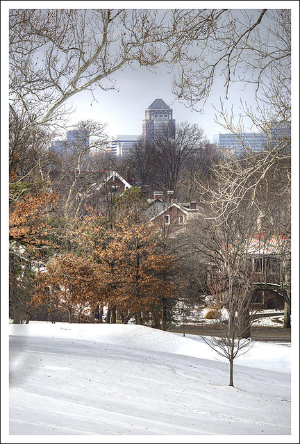 Forest Park 2015-02-21 10
