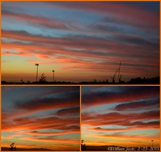 A Fiery Sunset Sky Painting Over The City This Evening! (2-25-15) Collage #5