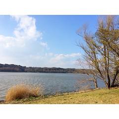 佐鳴湖で自然を満喫✨\(^o^)/✨ #佐鳴湖 #浜松 #自然 #nature #hamamatsu #sanaruko #lake #japan