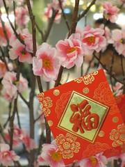 CNY Blossom 花開富貴