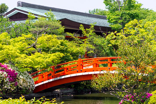 皐月 - 神泉苑 / Shinsen-en Temple