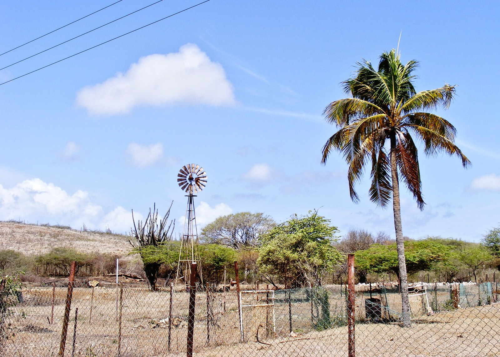 The Kunuku, or countryside of Curaçao.
