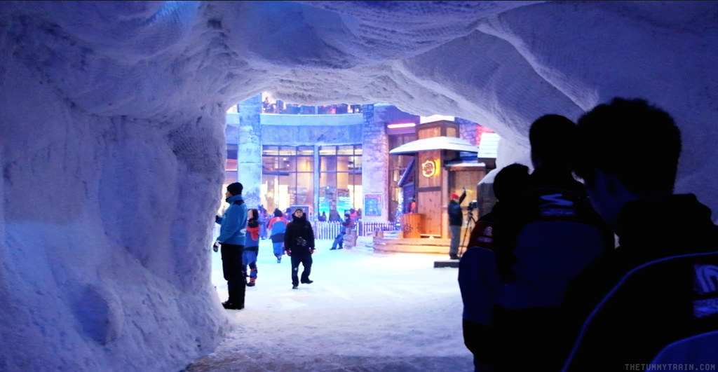16731969132 ef5e91b6d0 b - {Dubai 2014} Things to do inside the malls in Dubai