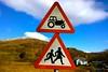 Tractors rule