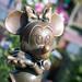 Disneyland February 2015