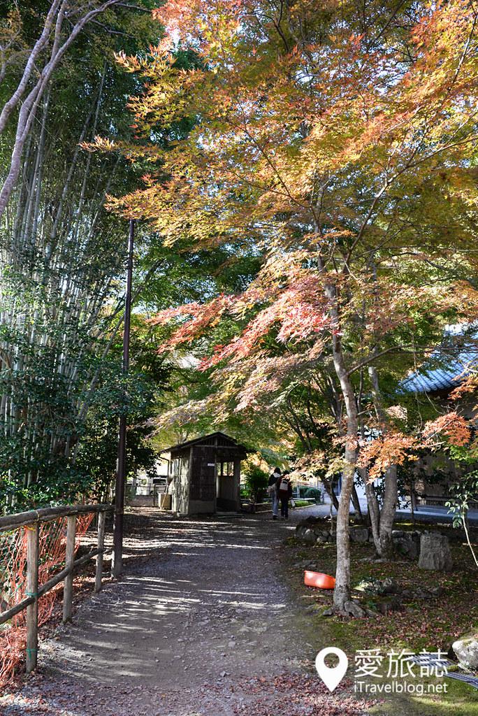 京都赏枫景点 高雄西明寺 26