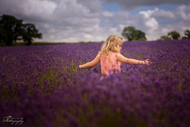 ... deep purple ...