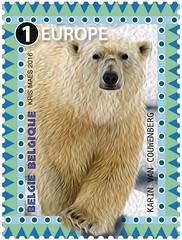 12 animaux en danger pour timbres seÌpareÌs