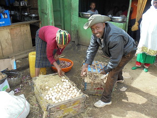 Packing eggs for transportation to Hawassa market (Photo:ILRI\LIVES SNNP regional team)