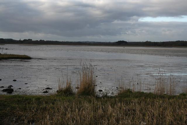 Lytchett Bay