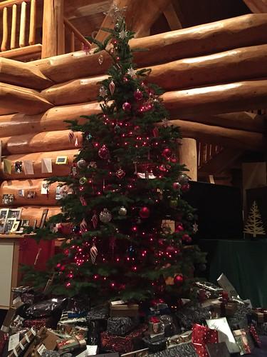xmas tree, christmas, presents IMG_4811