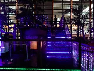 11 CIRCLEG 尖沙咀 1881 沙田新城市廣場 透明迷宮 (6)