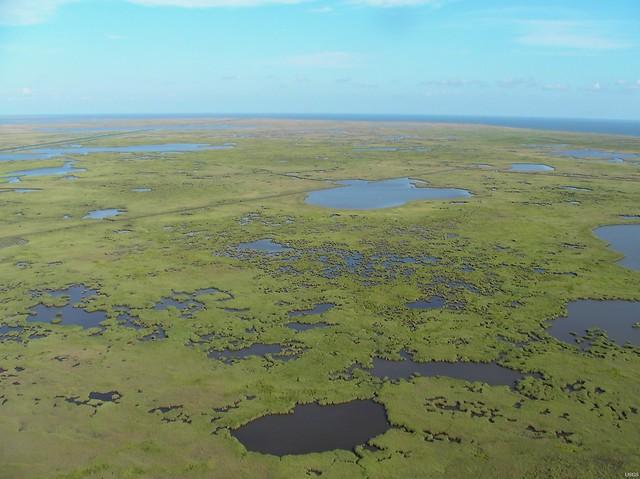 Mississippi River Delta Flickr Photo Sharing