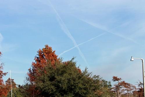 X marks the spot - December 11, 2014