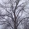 Ugh. Snow. #okc #oklahoma #oklahomacity #winter