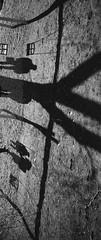 Shadow symphony