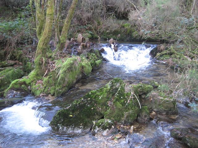 Río Lérez en Forcarei