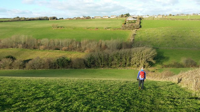 Rollercoaster Route to Ringmore