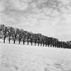 Winter am Egglburger See