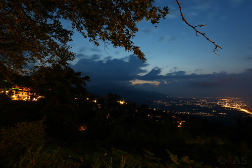 sunset tree streetlights greece pieria platamonas platamon oldpanteleimon makedoniathraki