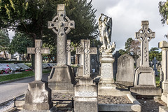 Glasnevin Cemetery and Museum