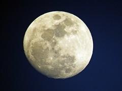 La Luna al atardecer