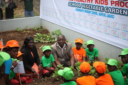 Nigeria – education gardens in schools where children learn about vegetable-growing