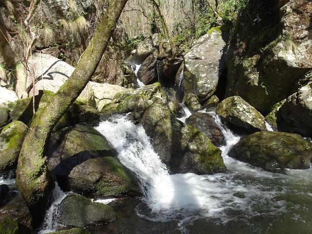 Cascada en el río Gato