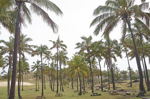 【写真】2015 世界一周 : アナケナビーチ/2021-04-05/PICT8644