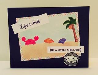 Shellfish beach