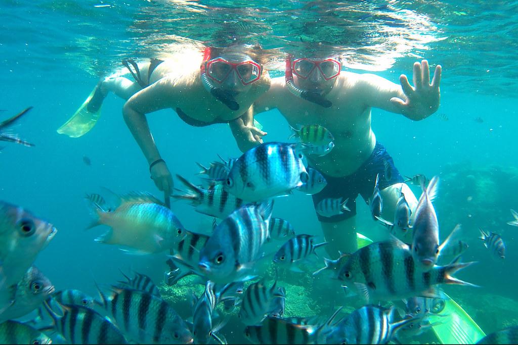 Karimunjawa Coral reef