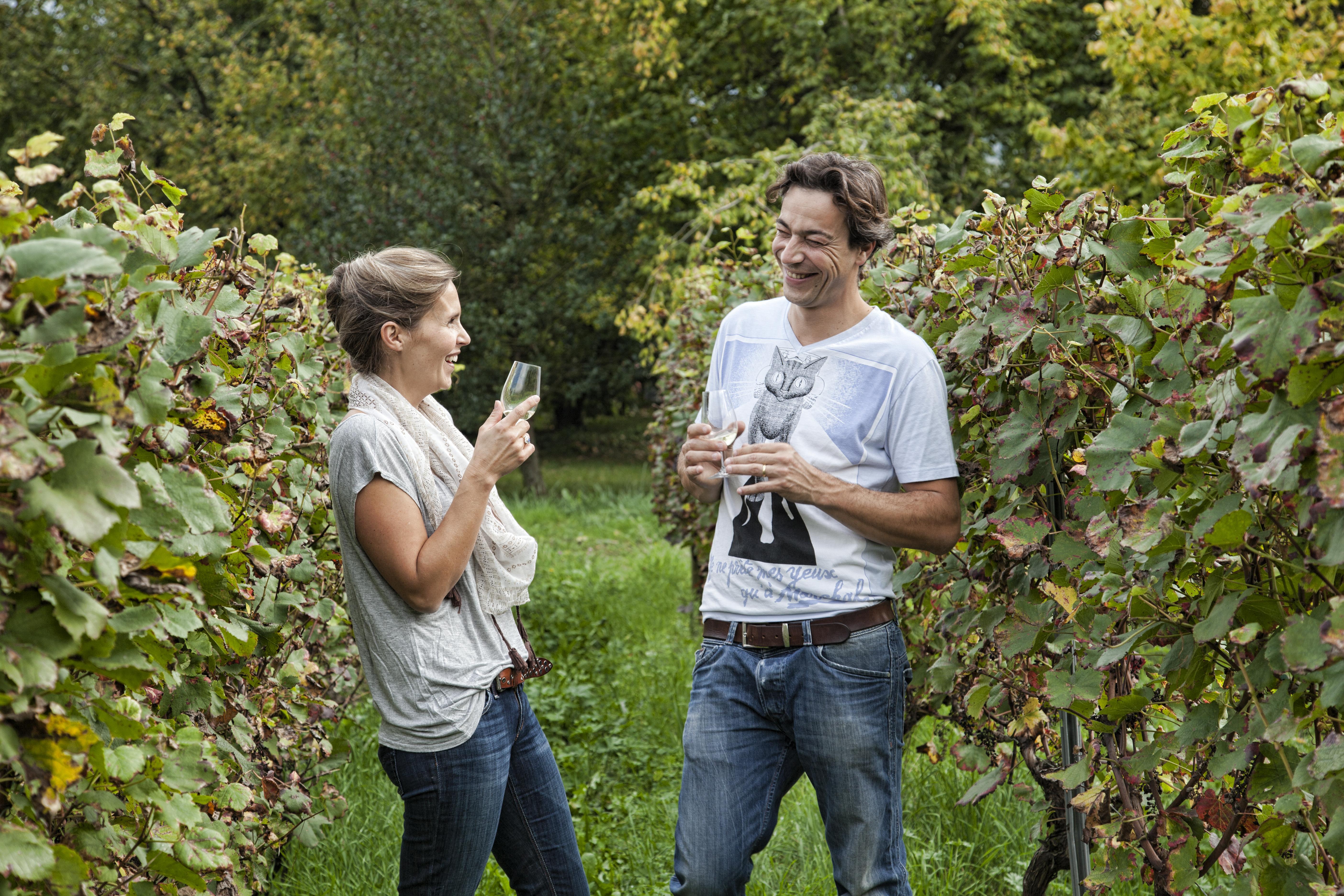 Vignobles & Découvertes (4)