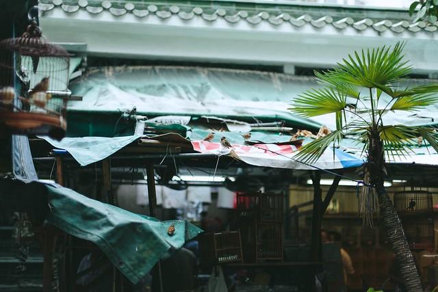 markets of Hong Kong10