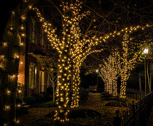 Holiday Lights by Geoff Livingston