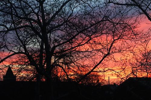 november philadelphia sunrise canonef50mmf14usm northeastphiladelphia canoneos70d