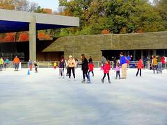 Outdoor Skating-rink