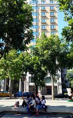 自拍神器之老少女情懷 Street Photography Trees at 勤美誠品綠園道 Park Lane