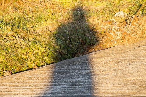 sunset sun 日本 太陽 longexpose 千葉県 mineoka 鴨川市 嶺岡
