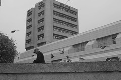 צילומי רחוב+spoting 048