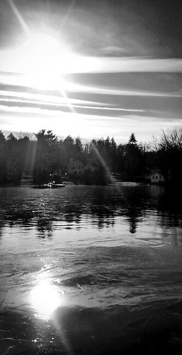trees bw usa sun lake newyork ice water sunshine mirror us unitedstatesofamerica rockhill unlimitedphotos majkakmecova motorolaxt1023