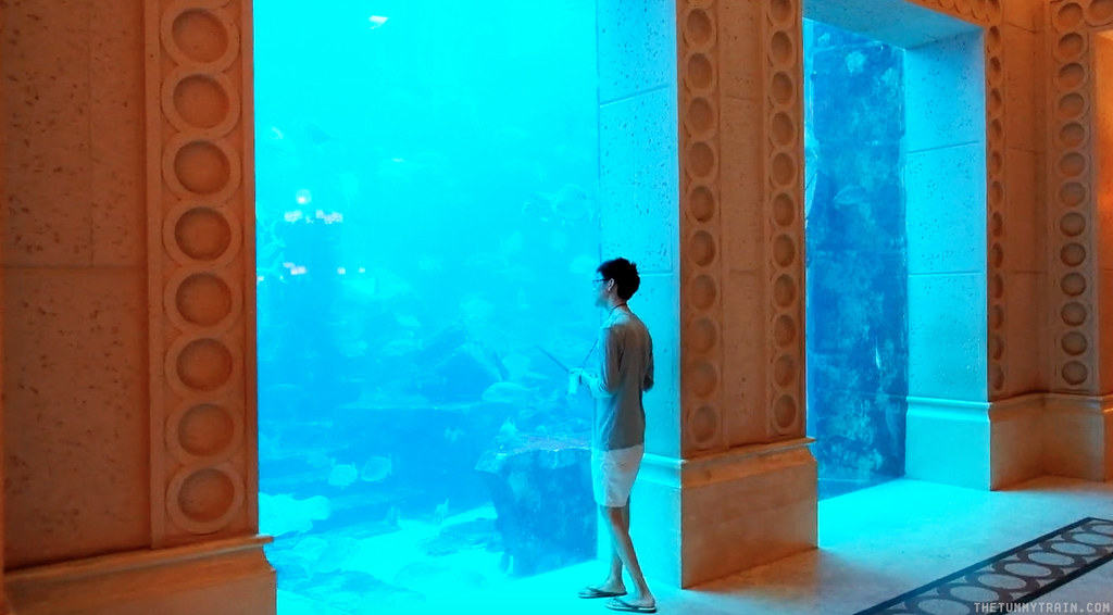 16130747913 962858202d b - {Dubai 2014} 24 hours at Atlantis The Palm