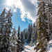 Geniale Winterlandschaft entlang des Wanderweges zum Pendling