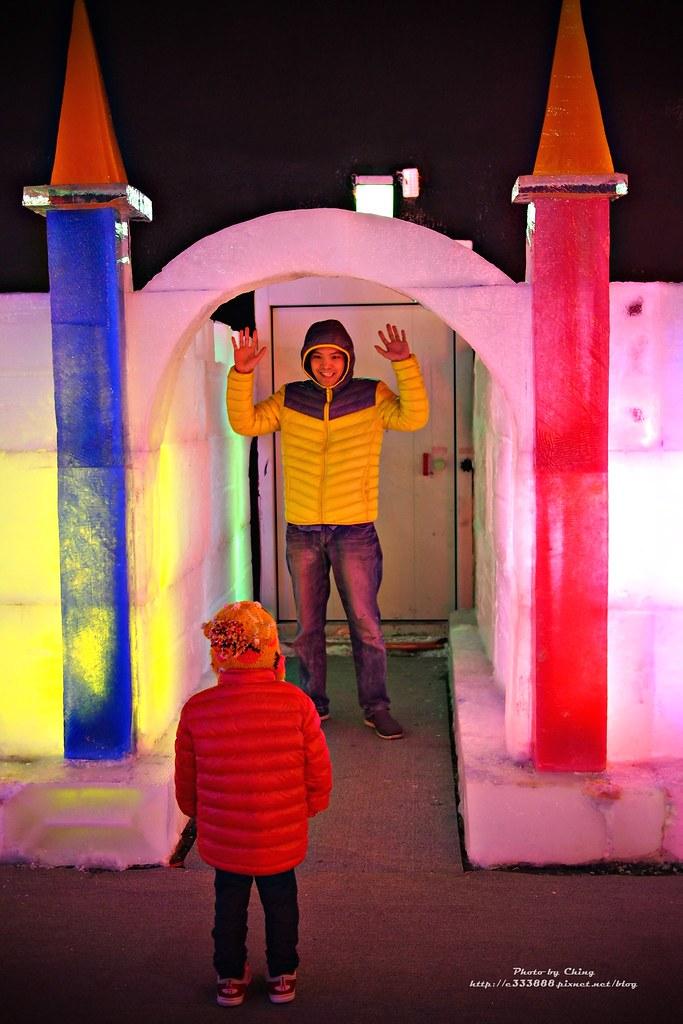 台中高鐵-2015正宗哈爾濱冰冰燈冰雕展-24