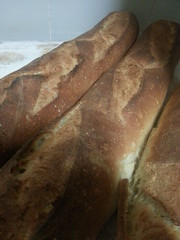 bread, rye bread, baked goods, ciabatta, food, baguette, sourdough,