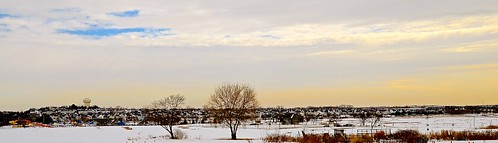 park trees winter panorama cloud snow cold tree clouds town illinois nikon view pano scene il kanecounty february stark saintcharles wideview chicagoist 2015 ottercove nikon2485 nikond7000 hickoryknolls saintcharlesparkdistrict hickoryknollsdiscoverycenter jamesobreencommunitypark