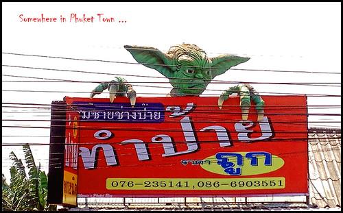 Yoda or Gremlin?