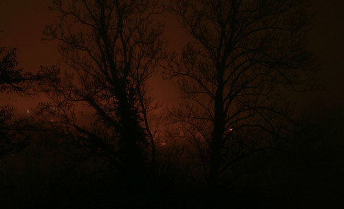 Nebelleuchten