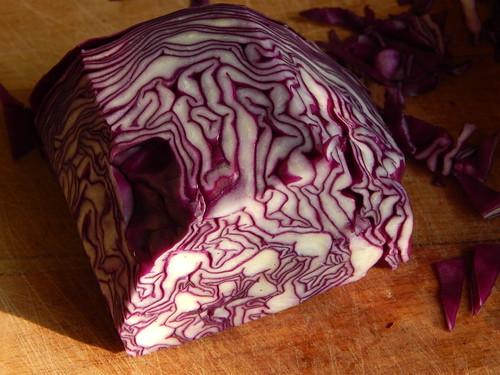 кусочек капусты, похожий на мозг