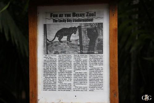 Zoo Karibikinsel Belize 19.11.2014 35