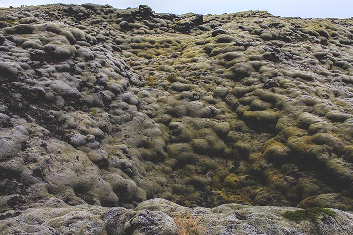 Iceland_Spiegeleule_August2014 005